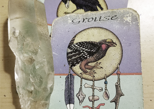 A story of Grouse Medicine